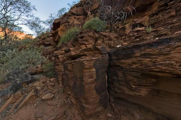 Kings Canyon Creek Walk